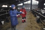 Нина Сергеева даёт ценные указания скотнику Ольге Овечкиной.